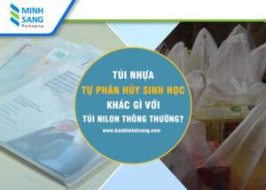 Túi nhựa tự hủy sinh học khác gì với túi nhựa thông thường
