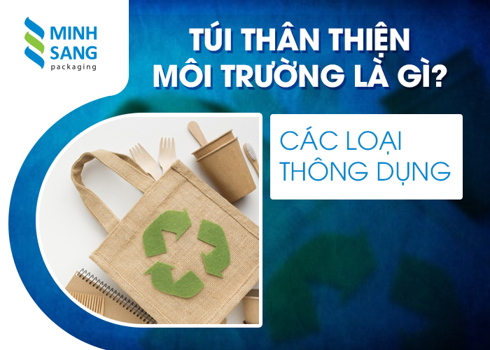 Túi thân thiện môi trường là gì? Các loại thông dụng