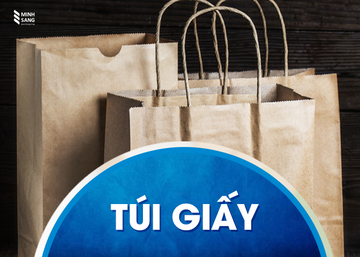 Các loại túi thân thiện môi trường thông dụng hiện nay - túi giấy